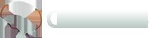 CogNeS 2018 Logo